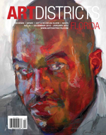 ARTDISTRICTS Dec 2012 - Jan 2013