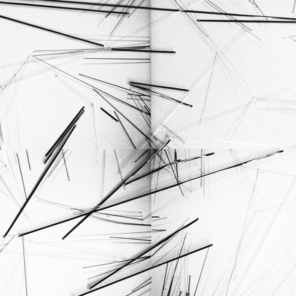 """Patricia Van Dalen, Wire Garden, 2013, ink jet print in cotton paper, plastic lacings, pins, 20"""" x 240."""" Courtesy of the artist and ArtMedia Gallery."""